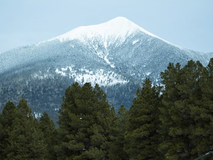 Moving from NY to Flagstaff on short notice